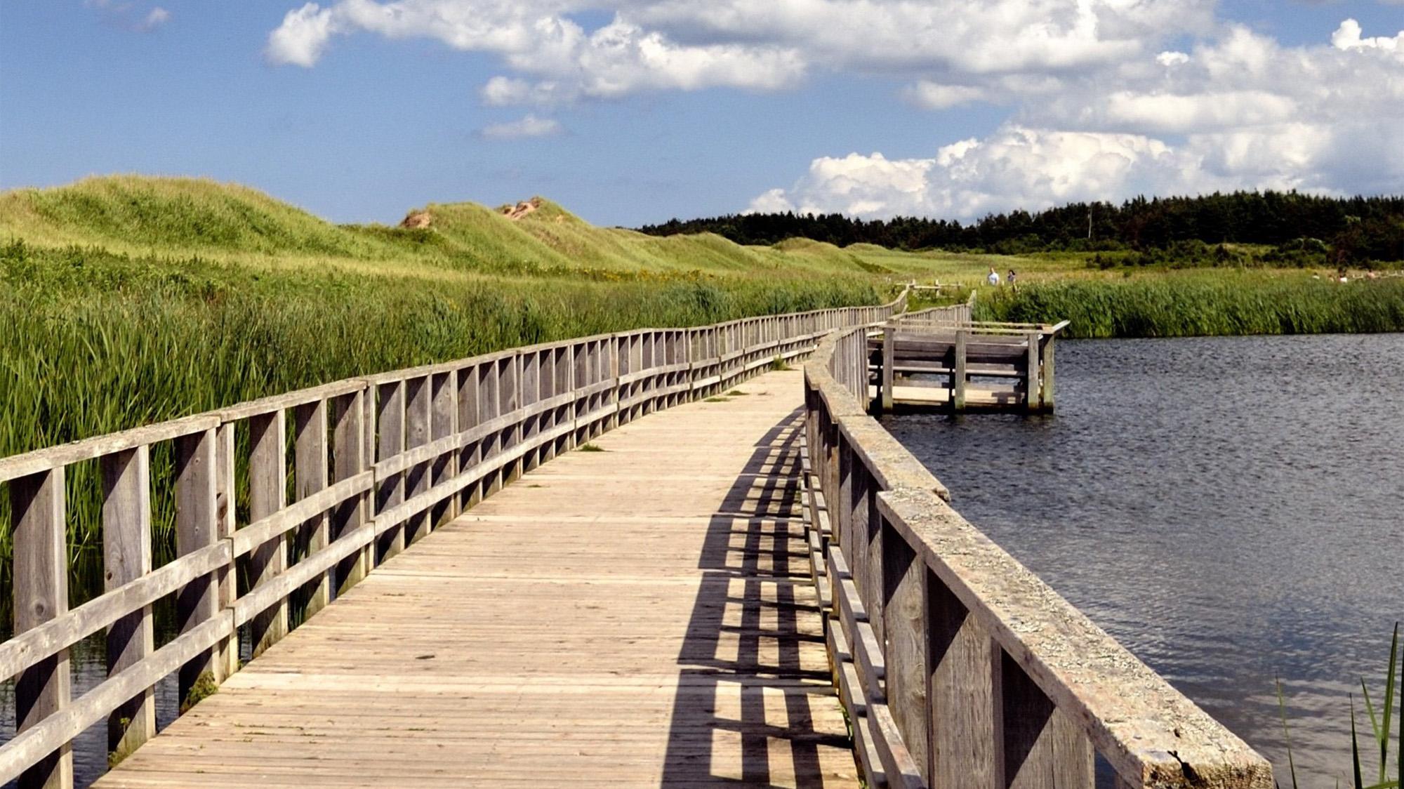 boardwalk stretching over the water alongside grassy fields