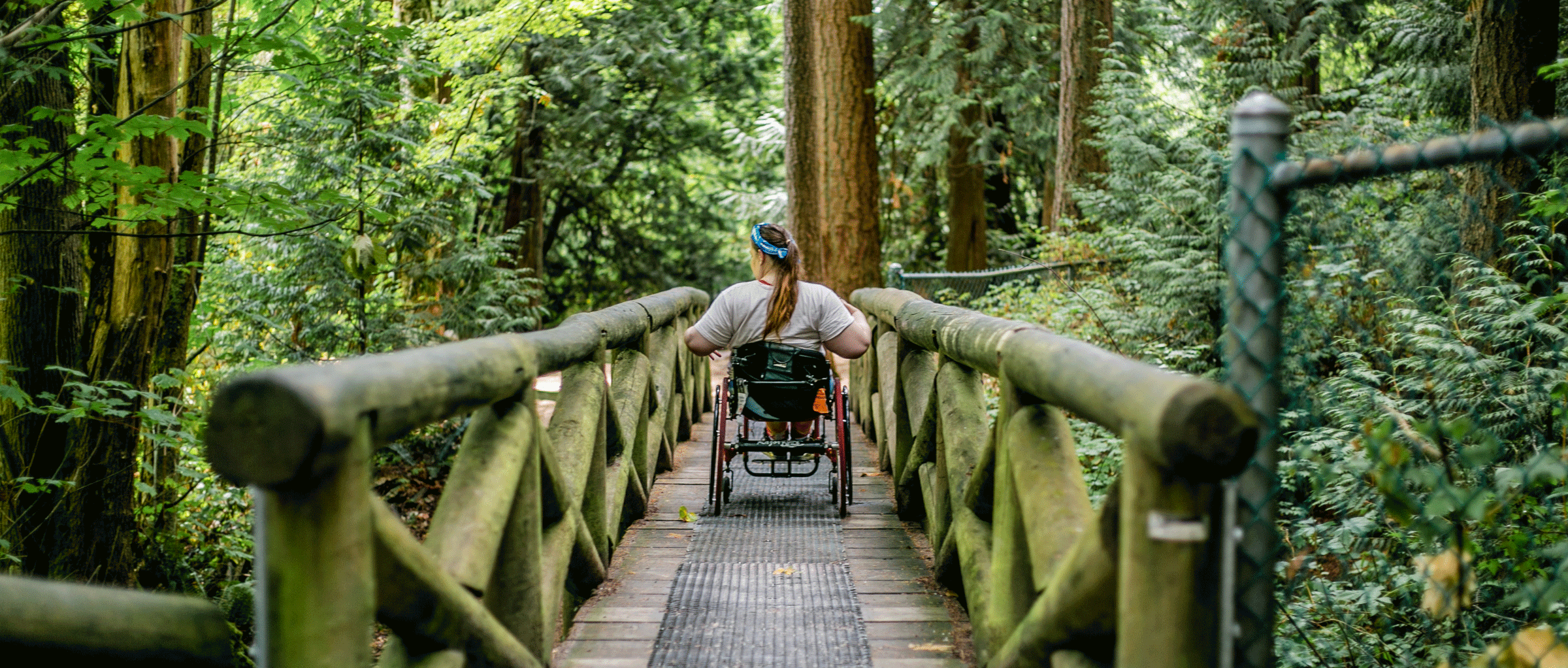 woman in manual wheelchair rolls through a mossy bridge in a forest